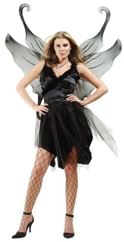 Midnight Fairy w/ Wings Size (16-18) Costume