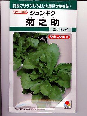 菊之助  タキイ種苗の春菊種です