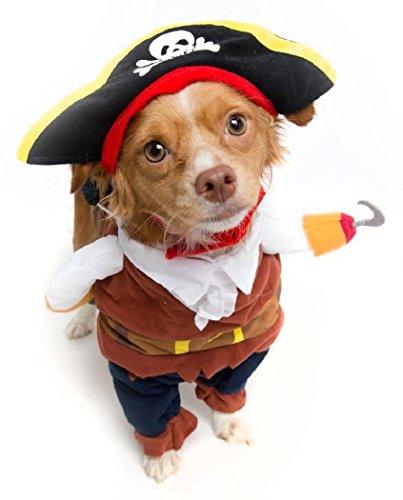 Pirate Dog Costume - Limited Edition (Medium)