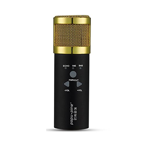 klim-mikrofon