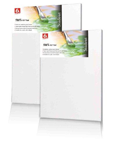 tela-40-x-50-cm-imprimitura-per-pittura-acrilica-preparate-bianche-con-cornice