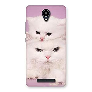 Enticing Kitty Family Back Case Cover for Redmi Note 2