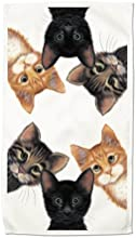 Peeping Toms Cat Cats Kitten Set of 2 Dish Kitchen Towels New Gift