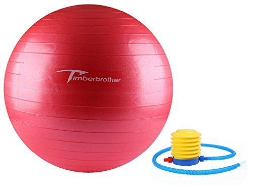 Timberbrother Exercise Stability Ball / Fitness Ball / Balance Ball with Pump (Pink, 55cm)