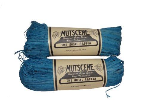 Bosmere K825 2-Pack Nutscene Hank of Raffia Twine, 300-Feet, Blue