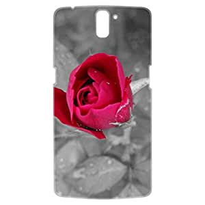a AND b Designer Printed Mobile Back Cover / Back Case For OnePlus One (1Plus1_3D_2267)