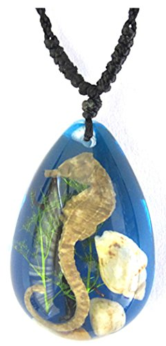 Real Seahorse Teardrop Shaped Necklace (Blue Backing) - 1