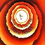Wonder Stevie Songs in the Key of Life