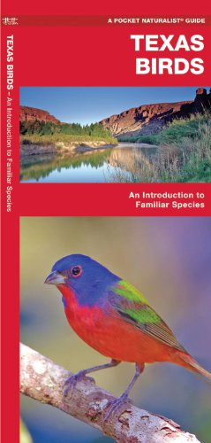 Texas Birds: An Introduction to Familiar Species (State Nature Guides)