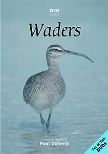 DVD Guide to Waders :Europe,Asia & N.America