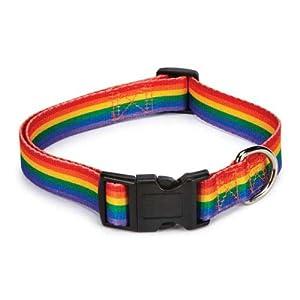 Casual Canine  ZA3615 06 81 Puppy Pride Collar For Dogs, 6-10-Inch, Rainbow