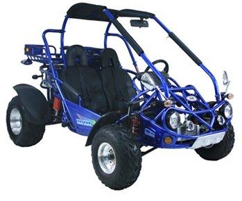 Trailmaster 300Cc Xrx Gokart