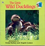 Little Wild Duckling (Look-Look) (0307118991) by Golden Books
