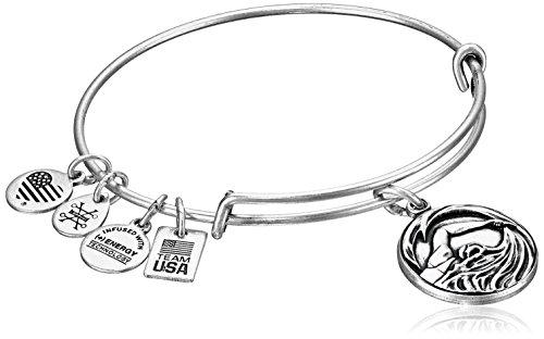 alex-and-ani-team-usa-swimming-expandable-rafaelian-silver-bangle-bracelet
