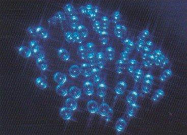 LED Lichterkette 96 LED 12m blau innen und aussen