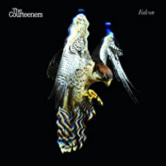 Falcon by The Courteeners