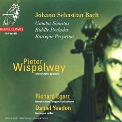 bach - J.S. Bach : sonates pour viole de gambe et clavecin 41JD9DDGEHL._SL500_AA240_