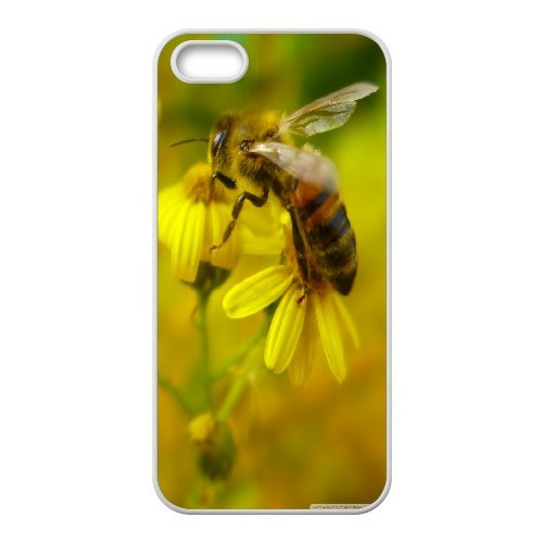 IPhone 5,5S Cases Bee 16, Iphone 5 Case - [White] Ancos