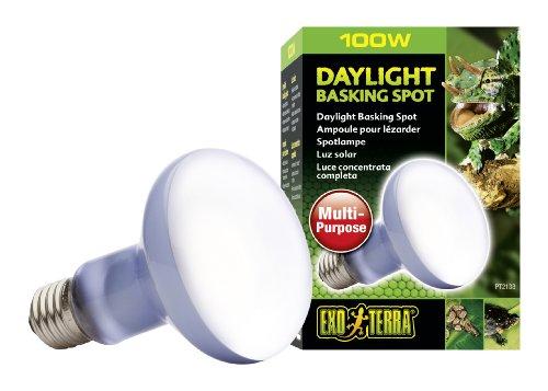 Exo-Terra-Sun-Glo-Basking-Spot-Lamp-100-Watt120-Volt