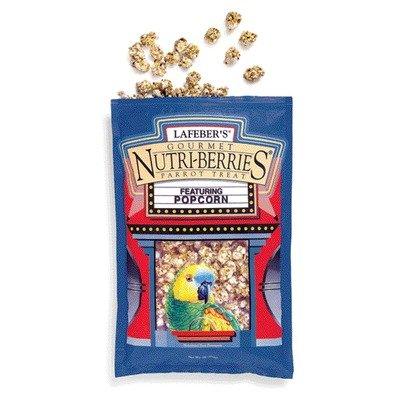 Cheap Large Popcorn Nutri-Berries Bird Treat (B007L3JGZ4)