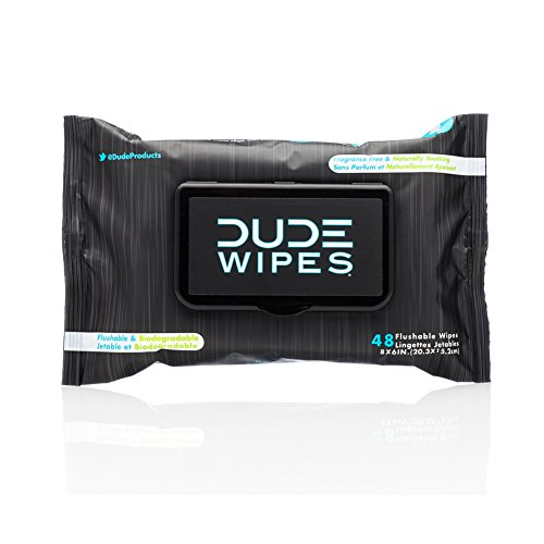 Dude Wipes Flushable Wipes, Unscented & Naturally Soothing, Dispenser Pack (48ct) (Flushable Adult Wet Wipes compare prices)
