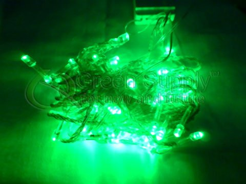 Led String Lights - Green Color (10 Meters) For Christmas, Weeding And Holiday Leds