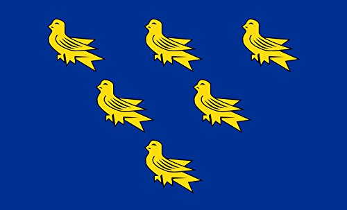 magflags-bandera-large-sussex-sussex-county-flag-showing-the-arms-of-sussex-six-gold-martlets-on-a-b