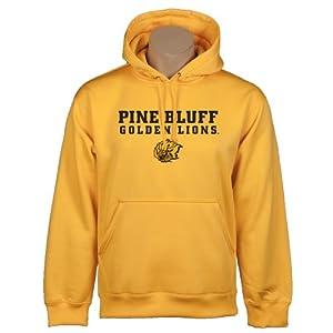 Arkansas Pine Bluff Under Armour Gold Performance Sweats Team Hood