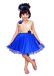 Kokoberry Girls' Frock (RDB755603_Blue_6-12 Months)