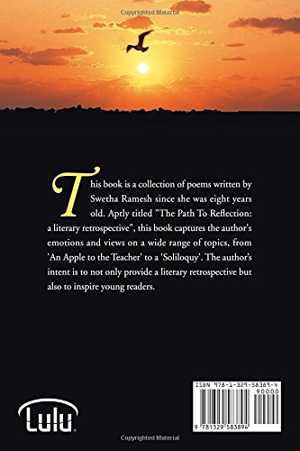 The path to reflection: A literary retrospective