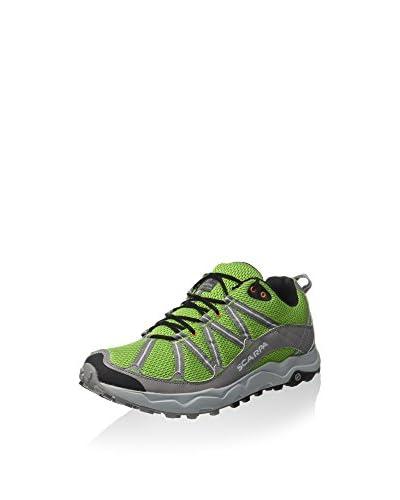 Scarpa Zapatillas Ignite Verde / Gris