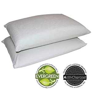 Sleep Master 2-Pack Traditional Memory Foam Pillows, Standard