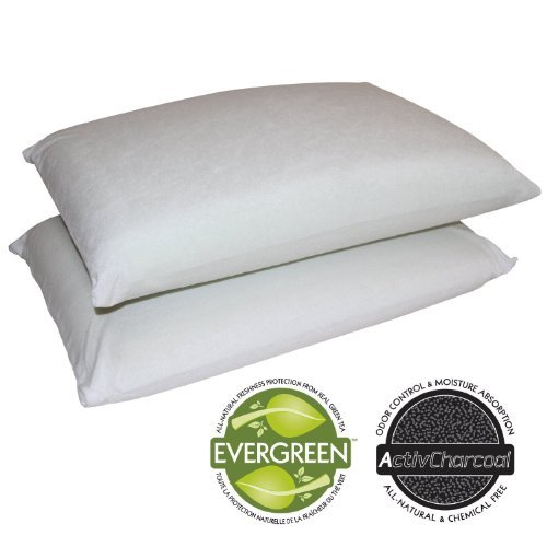 Lowest Price! Sleep Master 2-Pack Traditional Memory Foam Pillows, Standard
