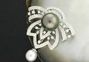 1576 - South Sea and Tahitian Black Pearl Brooch