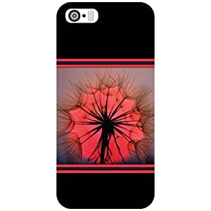 Apple iPhone 5S Back Cover - Dazzling Designer Cases
