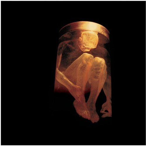 Nothing Safe by Alice in Chains (1999) Audio CD