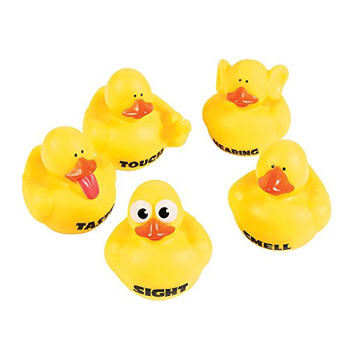 My Senses Rubber Duckies - 10 pcs