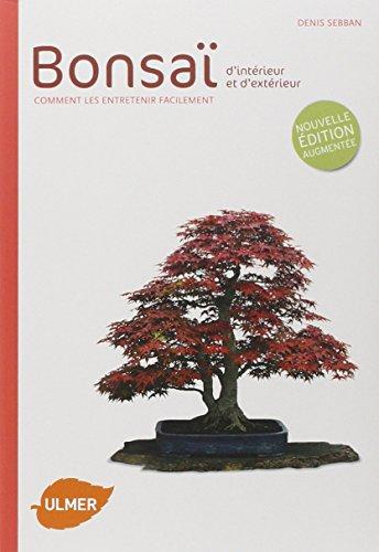 bonsai-dinterieur-et-dexterieur-comment-les-entretenir-facilement
