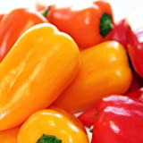 Suttons Seeds 156664 Pepper Sweet F1 Blockie Mix Seed