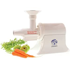 Household Juicer Color: White