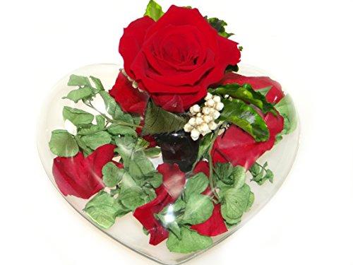 blumen-gesteck-aus-einer-ewige-rose-enthalt-eine-echte-premium-rote-konservierte-rose-unser-exklusiv