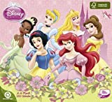 Disney Princess 2011 Wall Calendar