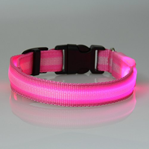 Dog Safety Collar, Led, Flashing And Solid, Nylon - Free Extra Batteries - Large And Small Dogs - Free Shipping (Pink, Small)