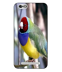 Make My Print Bird Printed Colorful Hard Back Cover For Lenovo Vibe C A2020