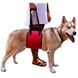 Red Dog Lift Harness for canine support aid - Lifting Older K9 with handle for Injuries, Arthritis or Weak hind legs & Joints. Medium and Large breed Assist Sling for mobility & Rehabilitation.