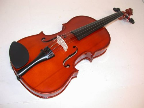 "Rossetti 15"" Rosewood Viola Pack W/ Case, Bow, Rosin, Chin Rest & Book/Cd, 1126A"