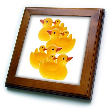 Rubber Ducks Pictures front-1070009