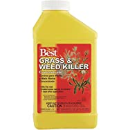 Maid Brands 728003 Do it Best Grass And Weed Killer-1QT CONC WEED GRASS KLR