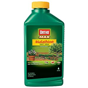 The Scotts Co. 0165210 Ortho Max Malathion Insect Spray