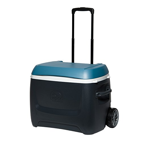 Igloo MaxCold Island Breeze 50 Qt Roller Cooler, Jet Carbon/Ice Blue/White (White Roller Cooler compare prices)